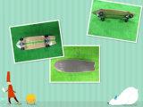 بيع بالجملة أربعة عجلة نظاميّة [لونغبوأرد] لوح التزلج