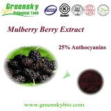 Extrato da fruta do Mulberry de Greensky com anticianinas de 25%