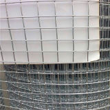 ConstructionのためのWelded Wire Mesh Aviary Meshの中国Manufacture
