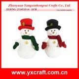 Sitio de la Navidad de la decoración de la Navidad (ZY14Y15-3-4)