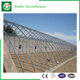 Invernadero de aluminio de la película del Po del perfil del marco de acero de la agricultura