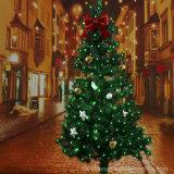태양 강화된 100개의 LED 옥외 크리스마스 끈 밝은 초록색 색깔