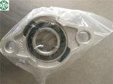Bloco de descanso plástico com rolamento Ucp207-20 do aço inoxidável