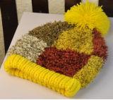 編まれた帽子を編む多彩な韓国の羽様式