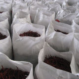 Peperoncini rossi rossi secchi del Yunnan senza gambo