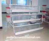 Cage de poulet d'éleveur de ferme avicole avec le système automatique de matériel (un type bâti)