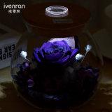 夜ライトが付いているIvenranの花