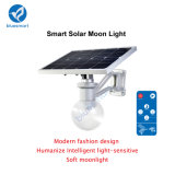 6W IP65 Sensor de Movimento Lithiuim Battery Solar LED Garden Light
