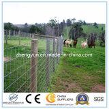 Der Bauernhof, der Ineinander greifen/einzäunt, regelte geknotet, Bereich-Zaun fangend