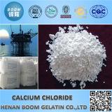 Het Chloride van het Calcium van de Rang van het voedsel