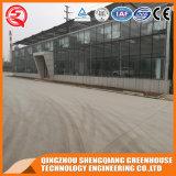 De commerciële Serre van het Blad van het Polycarbonaat van de Structuur van het Staal van de Landbouw voor Groente