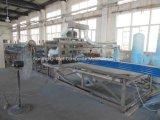 El material para techos acanalado del color de la fibra de vidrio del panel de FRP artesona W172138