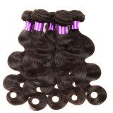 Малайзийские волосы малайзийца девственницы Weave человеческих волос девственницы объемной волны 8A волос 4PCS девственницы малайзийские Unprocessed