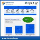 De duidelijke HDPE Waterdichte Stoffen van het Geteerde zeildoek voor de Dekking van de Pool