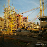 Construction lourde de matériel de grues à tour de potence de dispositif de relevage de Qtd4015 6ton