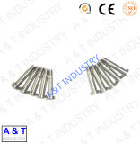 nas peças do bronze/aço de alumínio/inoxidável/forjamento com alta qualidade