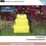 옥외를 위한 다채로운 Waterprof 포장 상자