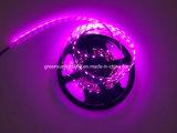 Streifen RGB-LED mit Dimmer