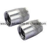Noix conique de construction de l'acier inoxydable 316