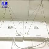 LED 위원회는 위원회 LED가 가벼운 LED 플랜트를 증가하는 램프를 증가하는 가벼운 Hans를 증가한다