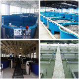 Оборудование многофункционального надежного водохозяйства рыб