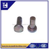 Cabeça redonda de aço ou rebite contínuo principal liso