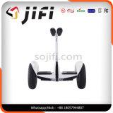 Individu sec de roues de Ninebot deux équilibrant le scooter d'équilibre électrique