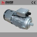 Электродвигатель с выдвижными тормозом и защиты THERMIC