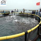 Acuacultura profunda de la jaula de la pesca en mar de la Tilapia de la apertura