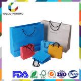 De Handtassen van het Document van de Luxe van het Ontwerp van de Douane van de fabriek voor het Winkelen