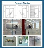 Porta de vidro aço inoxidável porta dupla