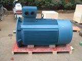 Motor elétrico trifásico de torre refrigerando de Yccl (YCCL80-YCCL132)