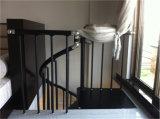 Escaliers intégraux modernes de structure métallique