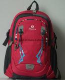 노트북 컴퓨터 두 배 어깨에 매는 가방, OEM 다기능 나일론 학교 옥외 휴대용 퍼스널 컴퓨터 책가방이 신식 여행에 의하여