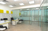 Modern Divide Spaces Partition Walls in Glass for Interior (SZ-WS683)