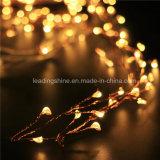 Kracher beleuchtet kupferner Draht-Zeichenkette-Lichter Ledoutdoor warmen weißen Leuchtkäfer für Partei-Hochzeiten