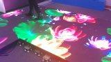 DMXフルカラーの新しいLEDのダンス・フロアのビデオLED表示