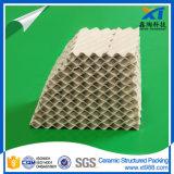 Упаковка башни высокой стойкости к действию кислот керамическая составленная