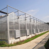 Invernadero agrícola de la hoja de la PC del Multi-Palmo hecho en China