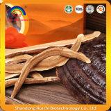 Здоровые ломтики гриба Ganoderma питья