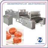 Fontes dos doces duros que depositam a linha completa da máquina que faz a máquina