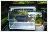 la glace de flotteur ultra claire de 12mm/repassent bas la glace blanche en verre de /Super pour le réservoir de poissons