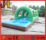 膨脹可能なスリップNのスライドのプールが付いている膨脹可能なスリップNのスライド