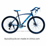 China Factory Supply Carbon Sport Racing Bike (LY-A-32)