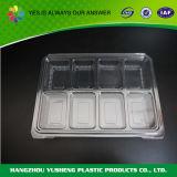 De beschikbare Plastic Dienbladen van het Gebruik van het Voedsel van het Type van Huisdier Plastic met Compartimenten, het Dienblad van het Ijsblokje