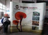 Europa que hace publicidad de la demostración de comercio magnética surge la visualización