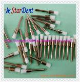 La profesión aplica la fábrica con brocha para los cepillos disponibles dentales de Prophy