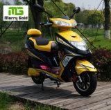 최신 판매 2 바퀴 1000W 싼 가격 전기 스쿠터