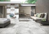 La porcelana gris llena del cemento de carrocería vitrificó el azulejo rústico esmaltado de Matt (MB69027) 600X600m m para la pared y el suelo