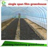 오이를 위한 많은 플레스틱 필름 녹색 집